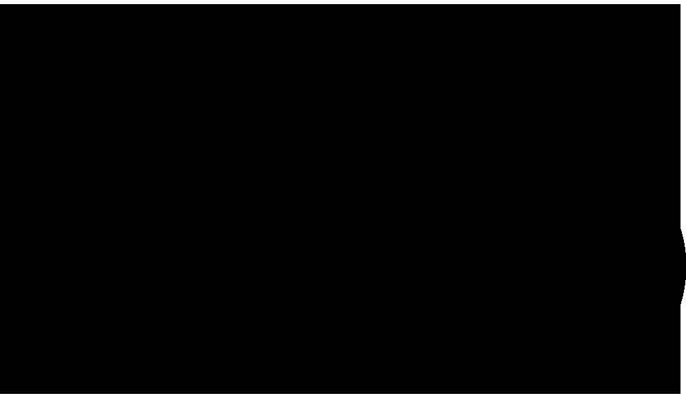 REGULAR TYPE BICYCLE