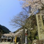 富士山登山に挑むのに必要な練習とトレーニング