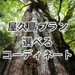 ◆屋久島・縄文杉トレッキング◆