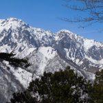 2018年3月中旬 谷川岳周辺 3+/ビーコン ご利用レポート