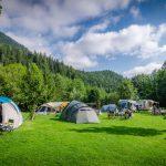 【キャンプ場の選び方】テントサイトの種類「フリーサイト」と「区画サイト」とは?
