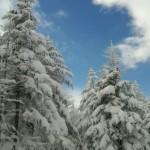 冬山用装備をレンタルされた方のご利用のレポートです!!